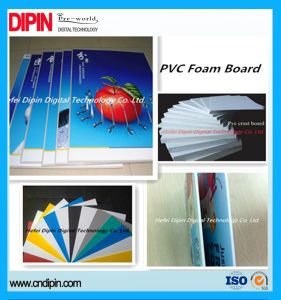 Environmental PVC Foam Sheet pictures & photos