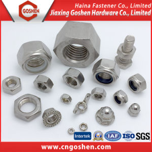 Variety Kinds of Nut, T Nut, Wheel Nut, Slotted Nut, Cap Nut, Flange Nut pictures & photos