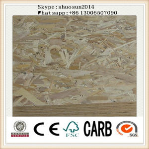 High Density WBP Glue 18mm OSB Plywood pictures & photos