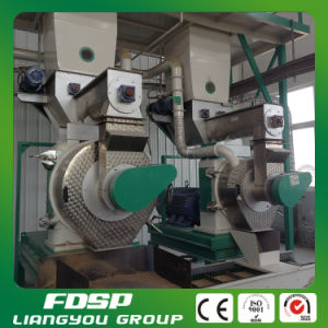CE Approved Sawdust Pellet Machine/Granulator pictures & photos