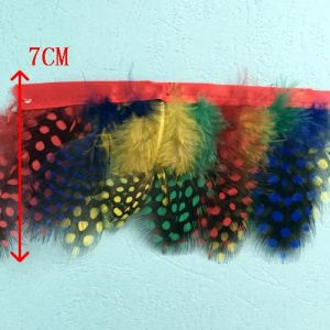 Decorative Dyed Feather Trimming pictures & photos