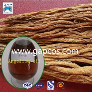 100% Natural Angelica Root Essential Oil (ngelicaarchangelica)