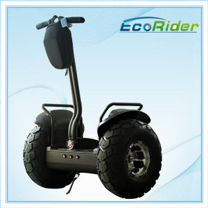 New Style 2 Wheel Auto-Balancing Electric Chariot pictures & photos