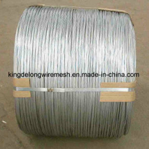 Quality Approved Stainless Steel Wire 304 pictures & photos