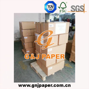 Thermal Ultrasound Paper in Roll for Sony Video Printer (UPP-110S) pictures & photos
