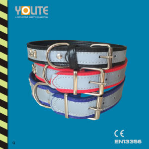 Pet Accessories Wholesale, Dog Collar Accessories, Pet Collar pictures & photos
