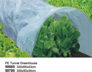 Garden Vegetable Tunnel Greenhouse with Net Cover pictures & photos