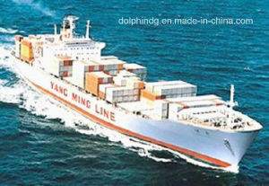 Shipping Forwarder: FCL Ocean Logistics From China to Bangkok