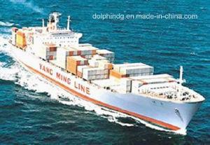 Shipping Forwarder: FCL Ocean Logistics From China to Bangkok