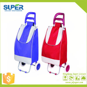Wholesale Vegetable Trolley Shopping Bag (SP-541) pictures & photos