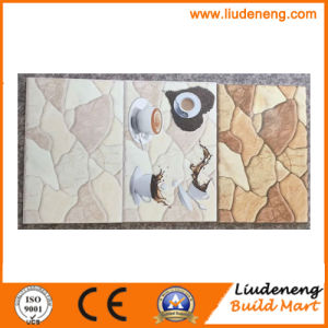 25X33cm Digital Print Ceramic Tiles for Interior Wall