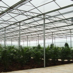 The Hot Horticultural Venlo Glass Greenhouse for Vegetable pictures & photos