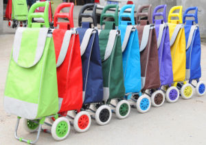 Folding Shopping Trolley Bag (XY-403) pictures & photos