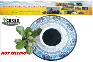 Agriculture Organic Fertilizer Soluble Leonardite Humic Acid pictures & photos