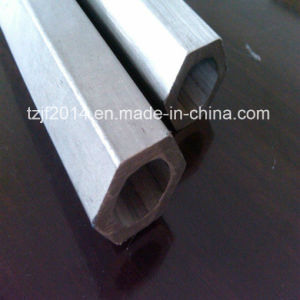 Hexagonal Stainless Steel Pipe (316L) pictures & photos