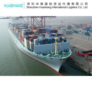 Sea Freight Import From The World to China pictures & photos