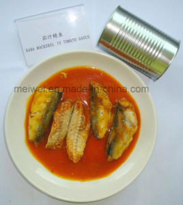 Health Food 425g Canned Mackerel in Tomato Sauce pictures & photos