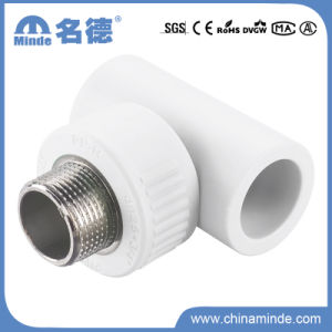 PPR Male Tee Type D Fitting for Building Materials pictures & photos