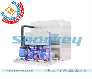 China Top1 Plate Ice Machine Plate Ice Making System for Fishery (1000kg/24hr -100, 000kg/24hr) pictures & photos