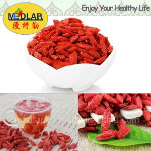 Medlar Chinese Wolfberry Organic Goji Berries