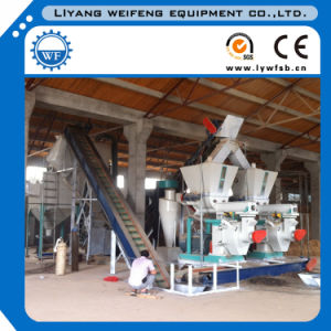 Biomass Pellet Machine/Rubber Wood Pellet Mill pictures & photos