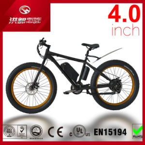 Hot Sale OEM MTB Fat Tire Electric Bike with 500W Brushless Motor pictures & photos