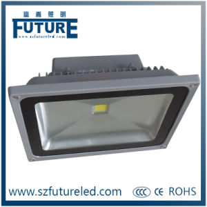 Pool Decoration LED Reflector 20W LED Flood Light (F-N1-20W) pictures & photos