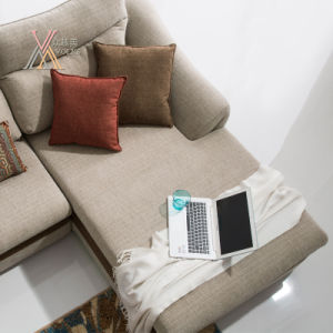 Modern Fabric Sofa Set with Cushion (1602) pictures & photos