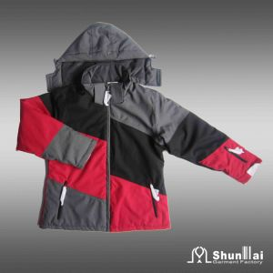 Women′s Cotton Padded Winter Jacket, Profashional Design