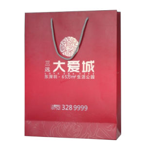 Paper Shopping Bag with Logo for Packing pictures & photos