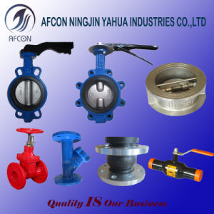 Concentric API/ANSI/DIN/JIS High Performance Wafer or Lug Type Butterfly Valve pictures & photos