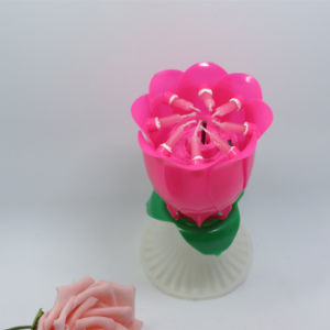 Children Birthday Party Deocrative Rose Flower Birthday Candle pictures & photos