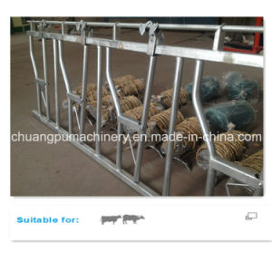 Farm Hot Dipped Galvanized Headlock Panels for Head Locking pictures & photos