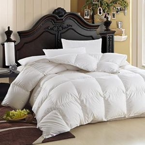 Puredown Lightweight White Goose Down Comforter Duvet Insert 300 Thread Count 100% Cotton Fabric, 600 Fill Power, Twin Size, White pictures & photos