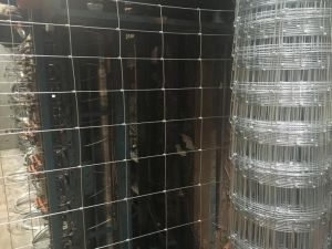 Wire Mesh pictures & photos
