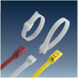 Insulate Well Double Lock Plastic Cable Tie pictures & photos