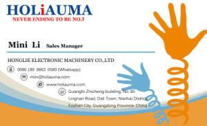 Holiauma Machine Sale 360*1200 mm 1 Head Embroidery Machine Ho1501L pictures & photos