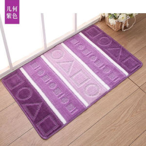 Hot Selling in Russia Anti-Slip Polypropylene Fiber Floor Mat pictures & photos