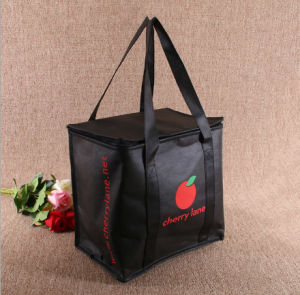 Promotional Insulated Lunch Picnic Cooler Bag, Wholesale Thermal Ice Bag pictures & photos
