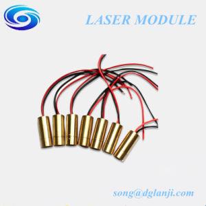 OEM High Quality 450nm 80MW 50MW 30MW 10MW Blue Laser Module pictures & photos
