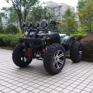 Factory Selling 1500W Adult Electric Quad Bike/ATV pictures & photos