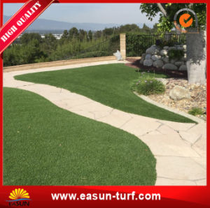 Soft Synthetic Turf for Public Green pictures & photos