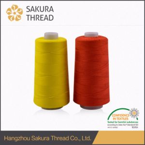 Flame Retardant Sewing Thread Oeko-Tex 100 1 Class pictures & photos
