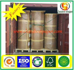 90GSM Offset Printing Paper Roll pictures & photos