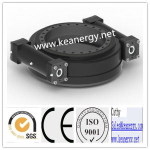 ISO9001/CE/SGS High Effeciency Two Worms Slewing Drive pictures & photos