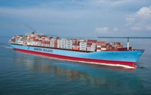 Ocean Freight to Copenhagen/Aarhus/Oslo/Gothenburg/Helsinki From China pictures & photos