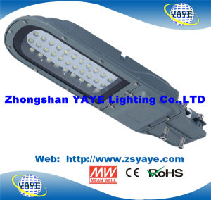 Yaye 18 Hot Sell 40W LED Street Light / 40W LED Road Lamp /40W LED Street Lighting with 3 Years Warranty pictures & photos