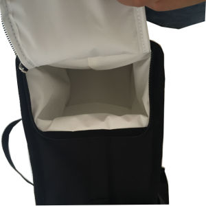Foldable Cooler Lunch Bag with Container pictures & photos