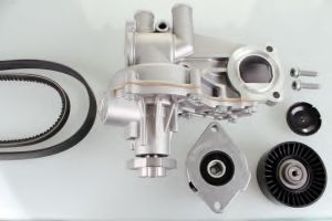 Brand New Seat VW Power Steering Water Pump pictures & photos