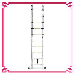 Multi-Purpose Double Telescopic Ladder pictures & photos